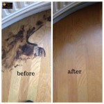 Burn Flooring repairs London